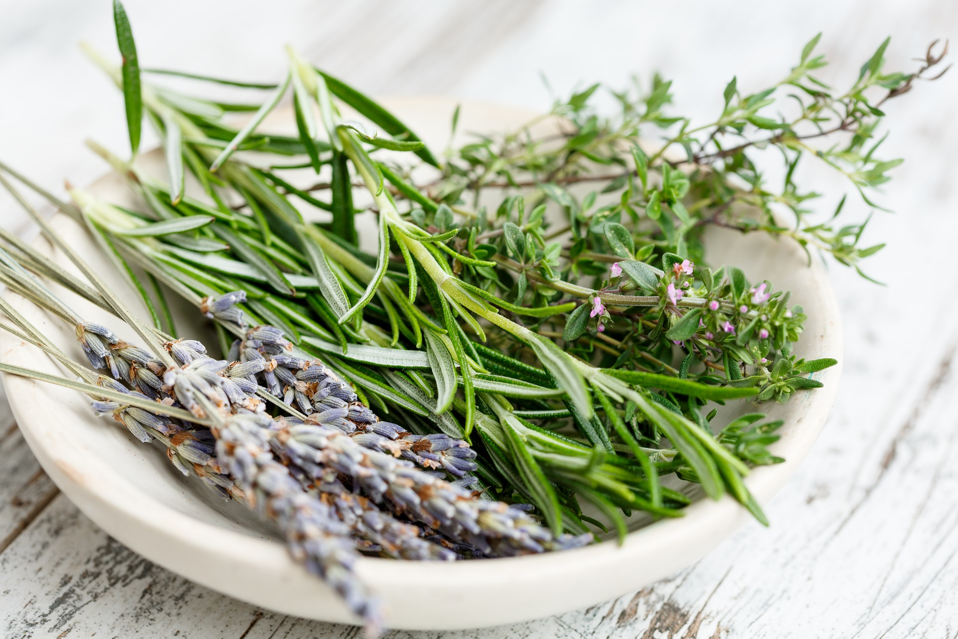 FIND OUT MORE ABOUT HERBES DE PROVENCE