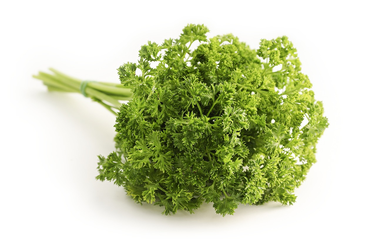 FIND OUT MORE ABOUT PARSLEY